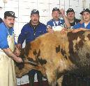 Vleessector wil overleg over ritueel slachten