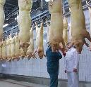 'Vleessector moet beter bestaansrecht claimen