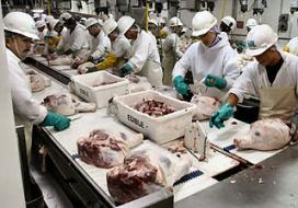 Brits vleesbedrijf wil alleen Polen