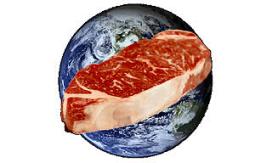 'Minder vlees eten helpt aarde niet