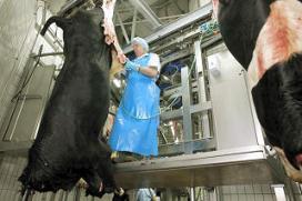 Campagne veilig werken in vleessector