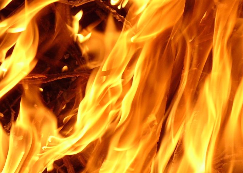 Kippen omgekomen bij brand in Swifterbant