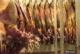 Attachment 001 food image vls3460i01 80x54