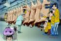 Vleessector vermoedt 'complot