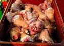 Oud Braziliaans vlees in pakhuis onderschept
