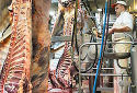 'Belgische vleessector in diepe crisis