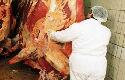 Reiniging en desinfectie in Campden-gids