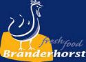 Branderhorst neemt Hazenbroek over