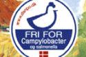 Danpo levert campylobacter-vrije kip