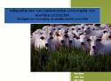 LTO schiet rapport vleesconsumptie af