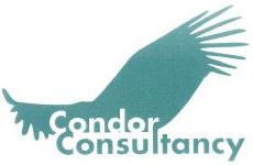 condor consultancy