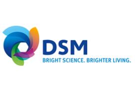 DSM opent vernieuwde productielijn voor verpakkingsmateriaal in Emmen