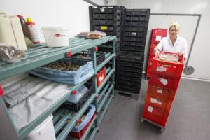 Afbouw F-gassen brengt aanvoer gekoelde producten in gevaar