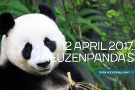 Inhaken op Pandamania met babi-panda en pandaworst