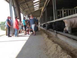 Geslaagde Open Boerderijdag voor Vleeshandel P. van den Berg