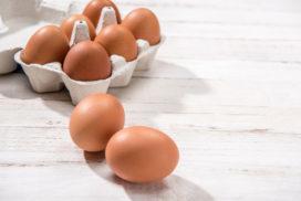 Schippers: niet zwartepieten in eiercrisis