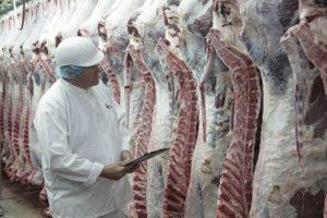 Vleessector wil CO2-voetafdruk verder verkleinen door samenwerking