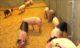 Pilot Superunieleden met 'dartelvarkensvlees'